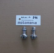 A Number Plate Holder Screw